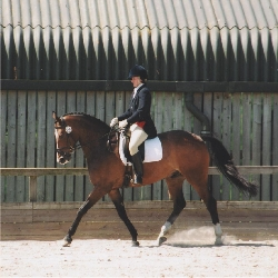 Gill Maybury competing in a dressage event